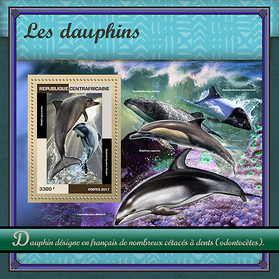 Central African Republic 2017 MNH Dolphins 1v S/S Marine Animals Mammals Stamps