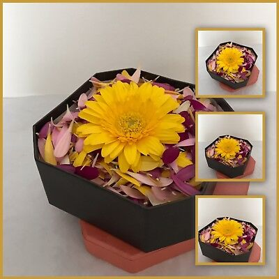 GERBERA FLOWER GIFT Buy Fresh Flowers ANY OCCASION BOUQUET Free Delivery in UK