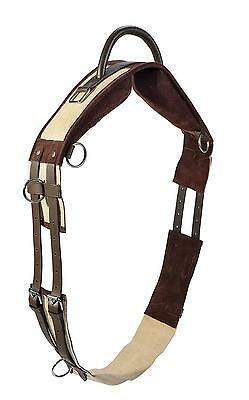 Busse Lunging belt with Handle for without Saddle MSh, Sh, P, THOROUGHBRED/WB