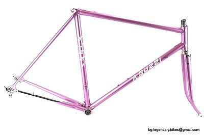 VINTAGE Race bike Frame artisanal Made in Italy Suzzi lugged Steel CAMPAGNOLO