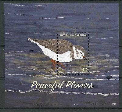 Antigua & Barbuda 2017 MNH Peaceful Plovers Piping Plover 1v S/S Birds Stamps