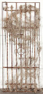 French Architectural Wrought Iron Panel.