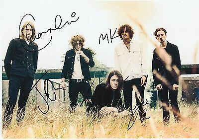 BLOSSOMS HAND SIGNED 12x8 PHOTO CHARLEMAGNE, AT MOST A KISS - TOM OGDEN 2.