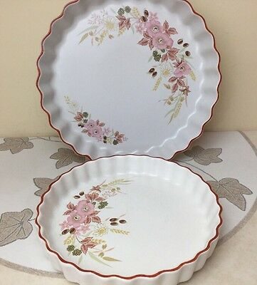 """Boots Hedge Rose 2 x Flan / Quiche Dishes 8"""" & 10"""" Lovely Condition"""