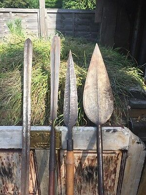 Collection Of Old Tribal Spears