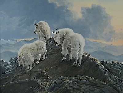 Lissa Calvert Mountain Goats Wildlife Painting Canadian Listed 24 x 32