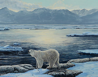 Lissa Calvert Polar Bear Arctic Landscape Painting Canadian Wildlife Art