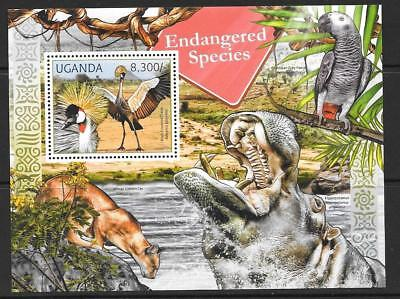 Uganda 2012 Endangered Species  Mnh