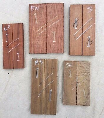 Knife scale multipack - Cherry plum, Bloodwood, African sandalwood, Sapele, Elm