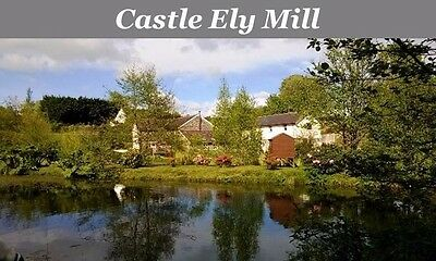 Self catering holiday for 6, West Wales –  £350 in OCT 2017 - £450 half term