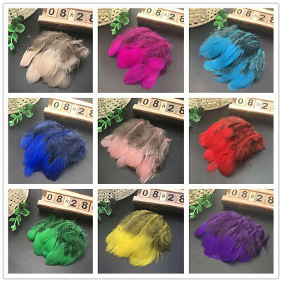 Beautiful 20-100pcs natural pheasant feathers 2-3 inch / 5-8 cm free shipping
