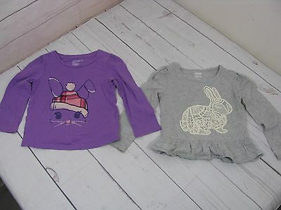 Set Of 2 Girls Long Sleeve Shirts Size 3T - A1041