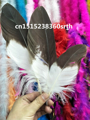 Wholesale 10pcs high quality scare natural Golden eagle feathers 6-10In/15-23cm