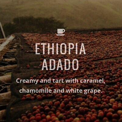 Freshly Roasted Coffee Beans - Ethiopia Adado