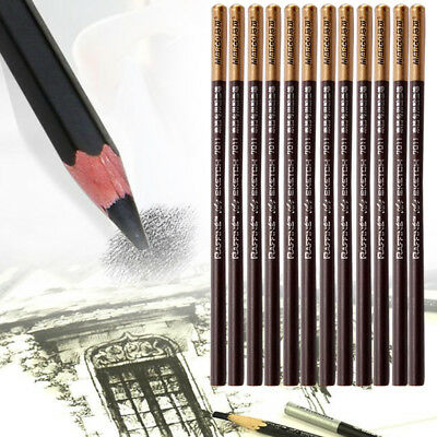 12PCS Brown Art Drawing Set Charcoal Pencil Pen Artist Sketch Crayon Craft