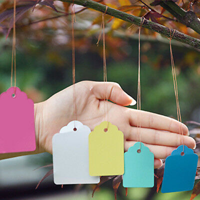 100Pcs/Lot Reusable Strip Line Gardening Labels Signs Plant Hanging Tags Markers