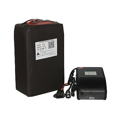 48 volt 20Ah LiFePO4 Battery Pack Lithium Iron with Charger BMS for 1000W Motor