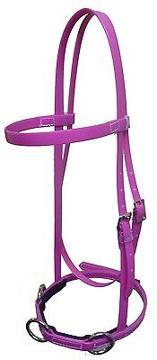 Horse Lunge Deluxe Cavesson  ~ Pony Cob & Full ~ Huge Vibrant Colour Range