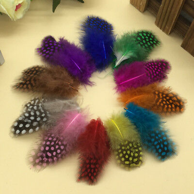20 x 3-7cm Beautiful Natural Pearl Chicken Feathers For Craft Art Masks