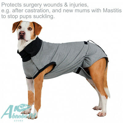 Surgery Protective Body suit Protect wounds castration Mastitis Whelping Mum Dog
