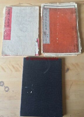 3 antique CHINESE BOOKS of BIRD paintings 100s of pages