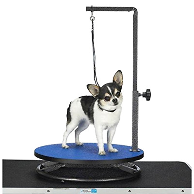 Brand New Master Equipment Small Pet Grooming Table Easy To Clean Non Slip, Blue