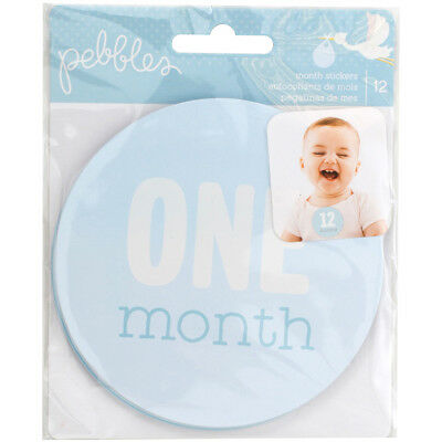 Lullaby First Year Age Stickers 12/Pkg Baby Boy Ages 1 Month Through 12 Months 7