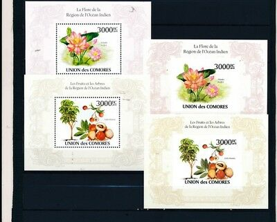 [OPG5034] Comores topicals good lot of 48 sheets very fine MNH