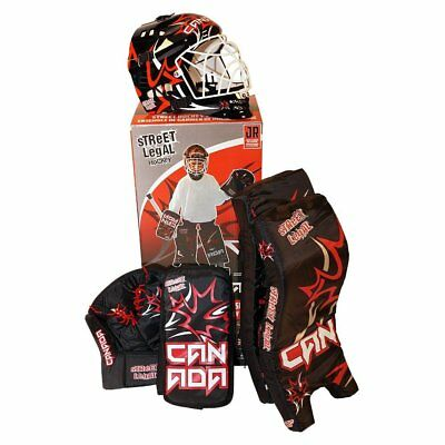 Junior Road Hockey GOALIE SET Age 6-10 Helmet w Mask, Leg Pads, Trapper, Blocker