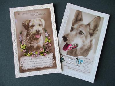 """2 EARLY REAL PHOTO POSTCARDS  """"  TERRIER  AND  ALSATIAN  DOGS   """"  POSTED 1920s"""