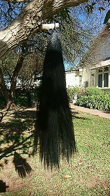 single black false tail 80cm