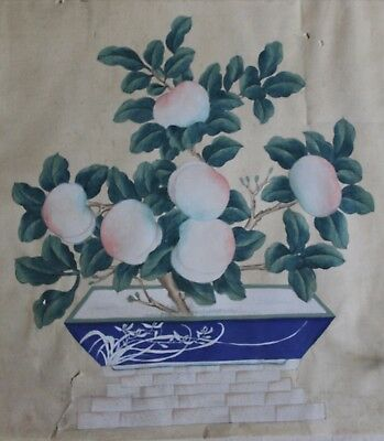 Chinese Watercolors, 19Th - 20Th Century Of Bonsai And Fruit In Porcelain Bowl
