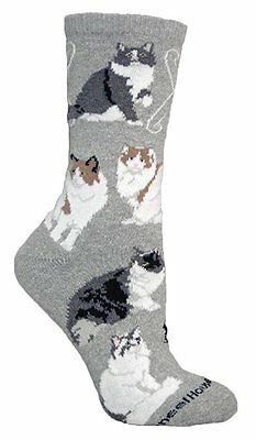 Ragamuffin Cat Dog Breed Gray Lightweight Stretch Cotton Adult Socks