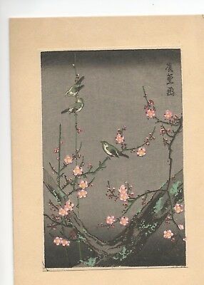 Early 1900's Japan Woodblock Print Cherry Blossom Birds Very Nice Postcard Size