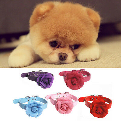 Dog Pubby Cat Collars Buckle Shiny Leather With Flower Pet Collars Red XS New