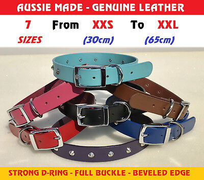 Genuine Leather Dog Collar Lead Harness STUD Belleved Full Buckle - All Sizes