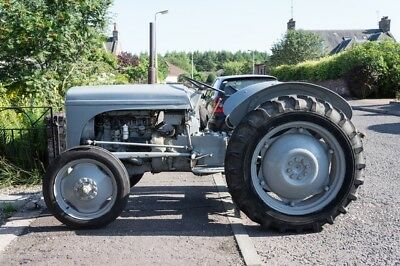 1949 Grey Fergusson Tractor - T20