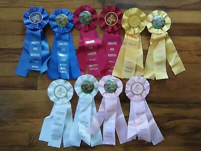 10 Horse Show Ribbons Sandlapper Horse Assoc. SC First-Fifth Places