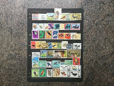 Selection Of 50 Plus Bird Stamps