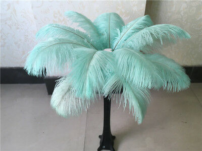 Beautiful 10pcs natural ostrich feathers 10-12 inches/25-30 cm (blue-green)