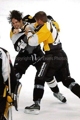 Bracknell Bees Ice Hockey The Hive England UK photograph picture poster print