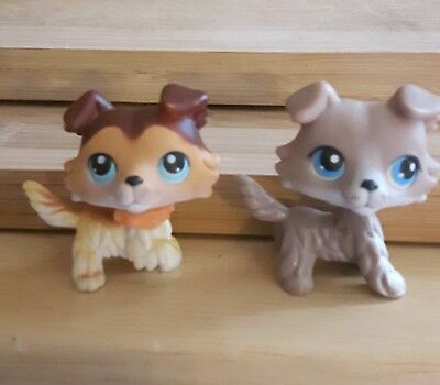 Littlest Pet Shop Collie Dogs - 58 with raised paw and collar & 67