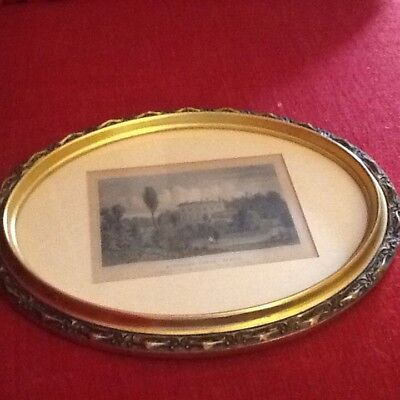 Oval Gilt Picture Frame