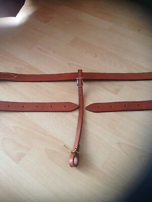 **NEW** Western flank strap set
