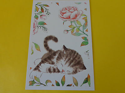 Post Card, Cute Kitten,