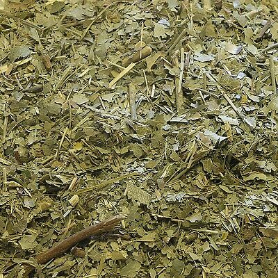 OREGON GRAPE LEAF Berberis aquifolium DRIED HERB, Loose Health Herbs 400g