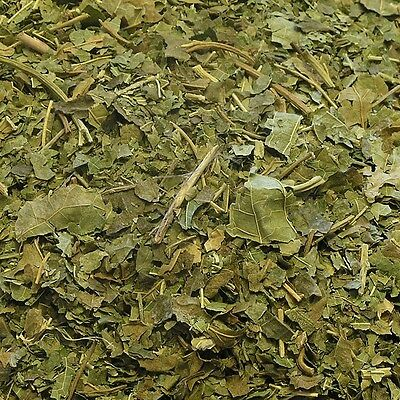 MULBERRY LEAF Morus nigra l. DRIED HERB, Loose Whole Herbs 400g