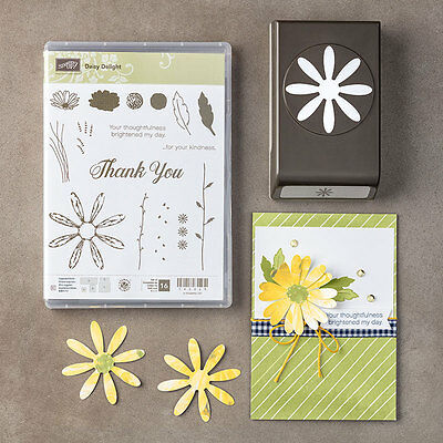 Stampin Up Daisy Delight Punch and Stamp Set -Gorgeous Flowers  - NEW - So Cute!