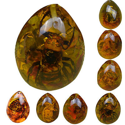 Resin Amber Butterfly Scorpion Crab Ants Spider Insect Stone Pendant Necklace Fi