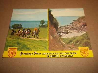 Auchenlarie Holiday Farm In Bonnie Galloway ~ Colour Photo Postcard Posted 1977
